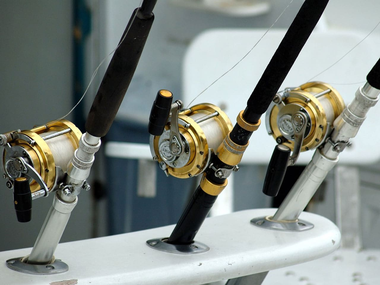 best line counter reels