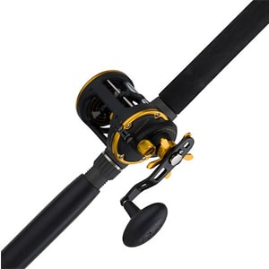 PENN Squall Level Wind Reel and Rod Fishing Combo